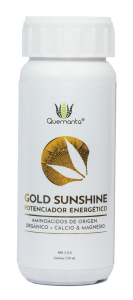 gold-sunshine-web