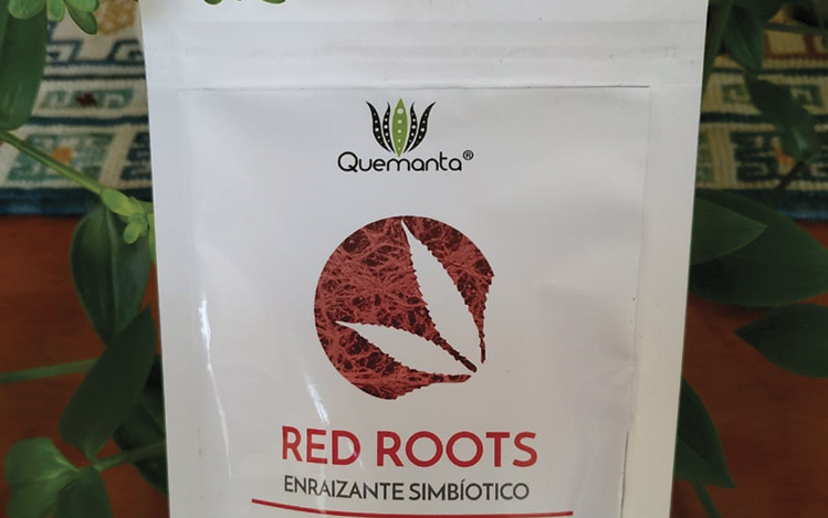 Uso Red Roots